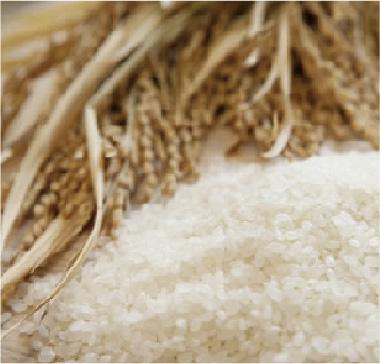 当たり前じゃない。良質な米。